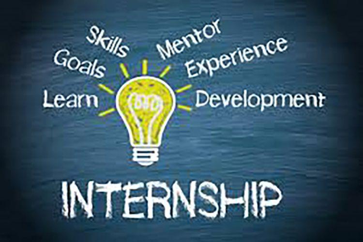 Students gain real-world experiences through Future Focus Summer Internships