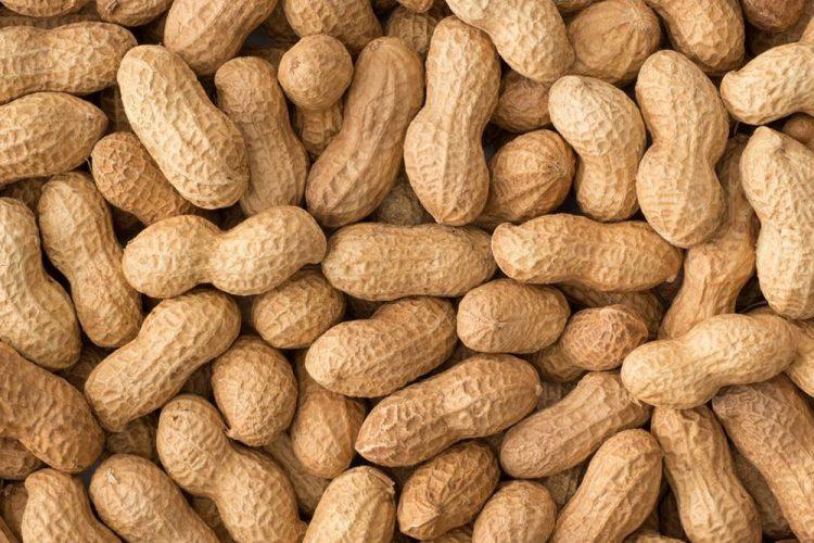 Peanut thief makes quick buck off sleeping vendors