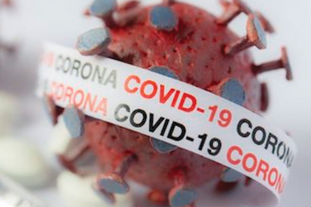 Fourteen new COVID19 positive cases reported