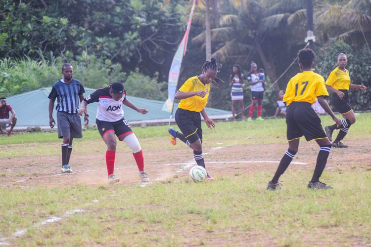 SVGFF to host two fill- in tournaments