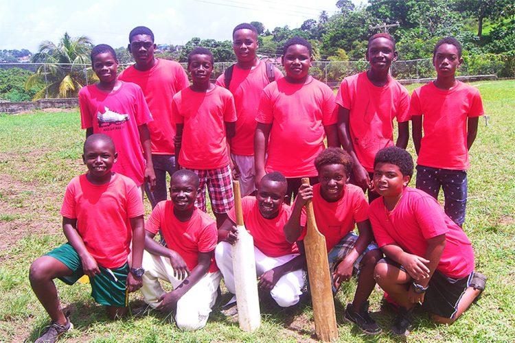 Gomea Genesis One wins 10/10 cricket title